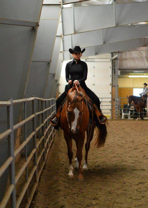 Fundraiser By Anvia Hampton Rmc Equestrian Team Goes To